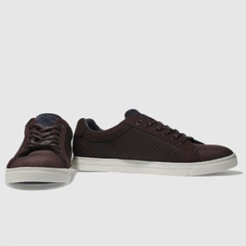 ted baker sarpio trainer - schuh - casual man