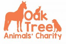 OakTree Animals